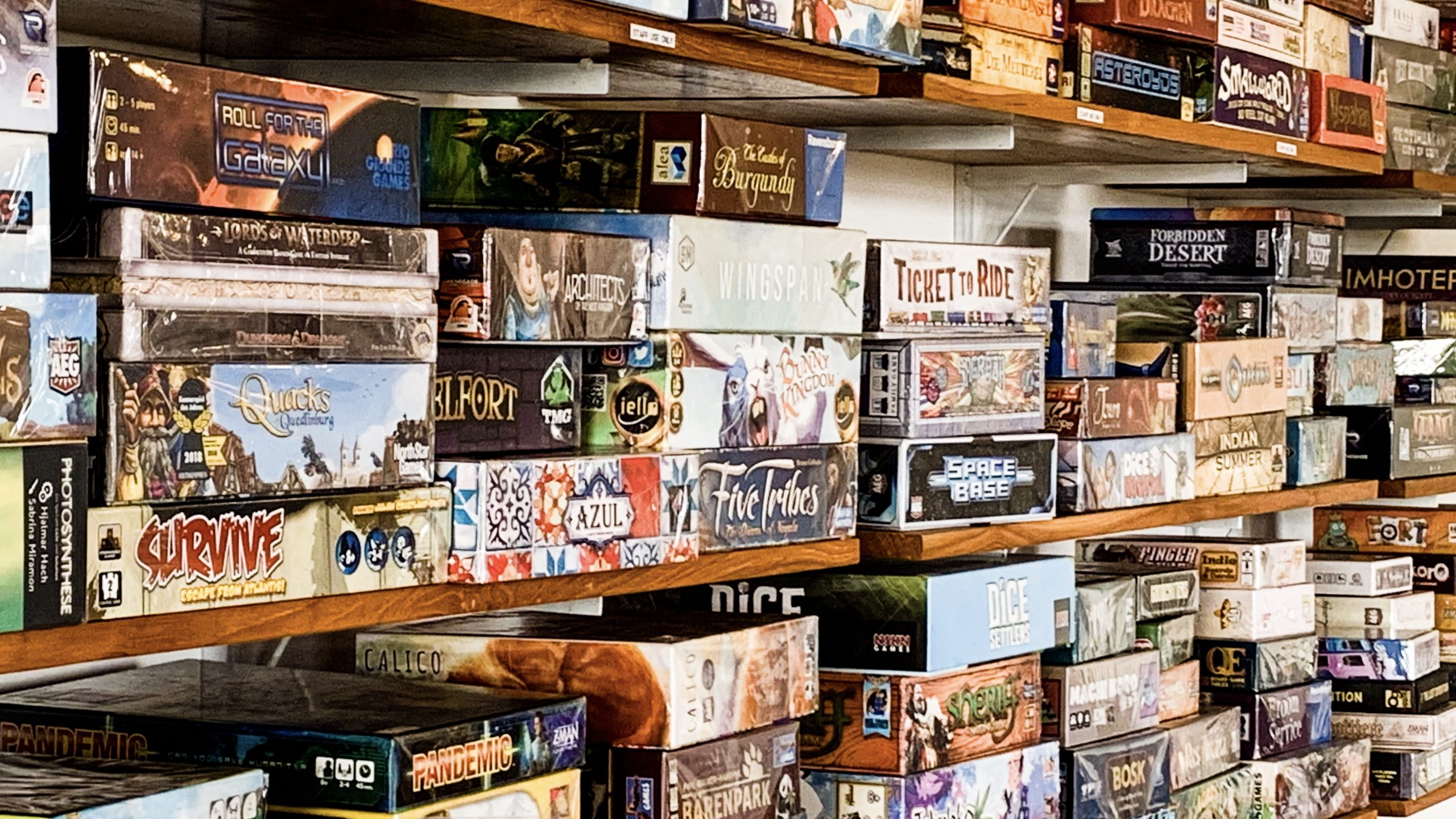 Board Games for Newbies